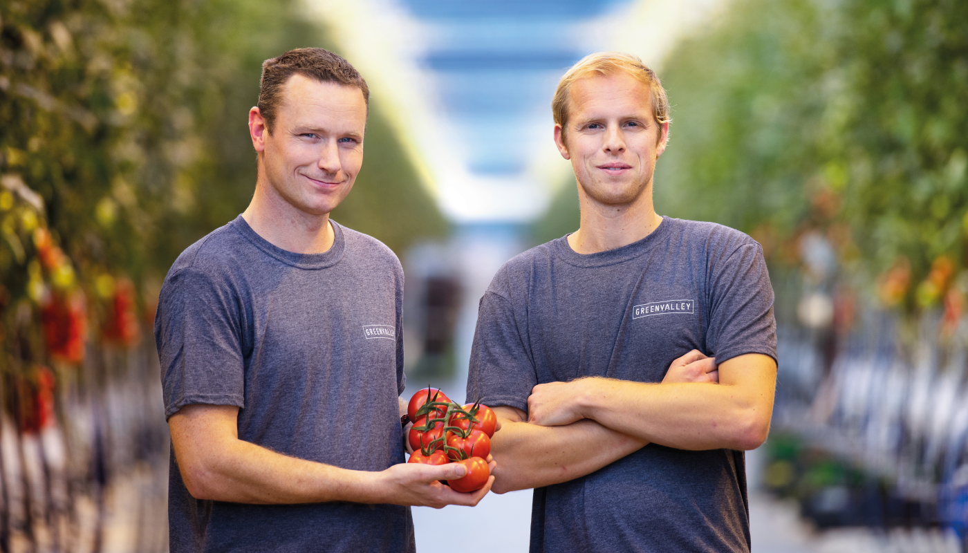 Tomaten Kwekerij GreenValley - Jong nieuw bedrijf in De Lier 1400x800